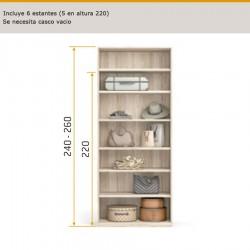 Interior de armario estantes