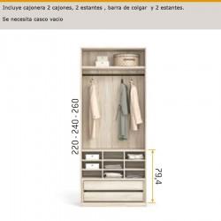 Interior de armario cajonera 2 cajones,camisero,barra de colgar y 2 estantes